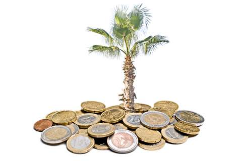 Palm growing from pile of euros
