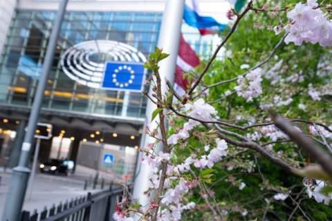 European Parliament Springtime