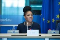 Hearing on Digitalisation for Development