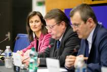 Paneuropean Working Group