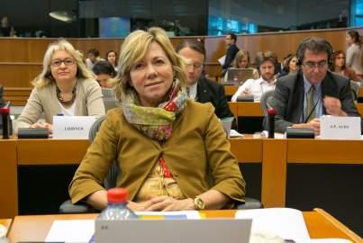 EPP Group Hearing on the Internal Energy Market - Pilar del Castillo Vera MEP